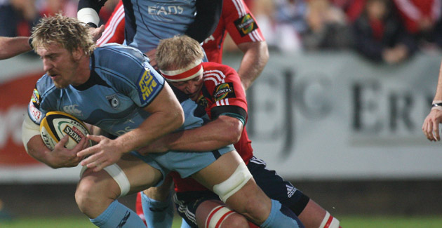 Powell on bench for Leinster clash